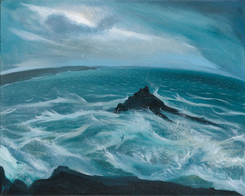 Wild Cornish Coast