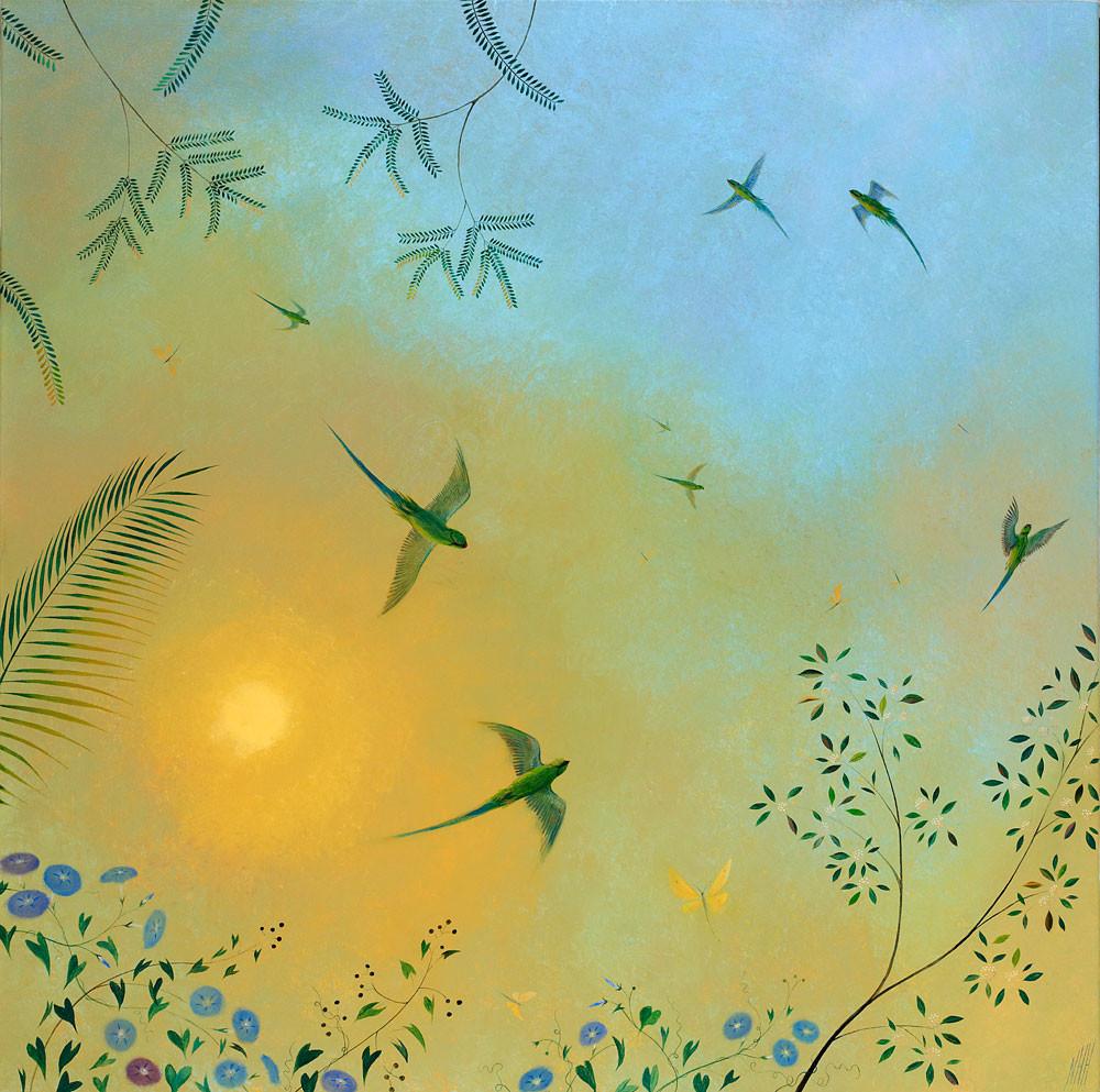 Screeching Parakeets – Indian Sun