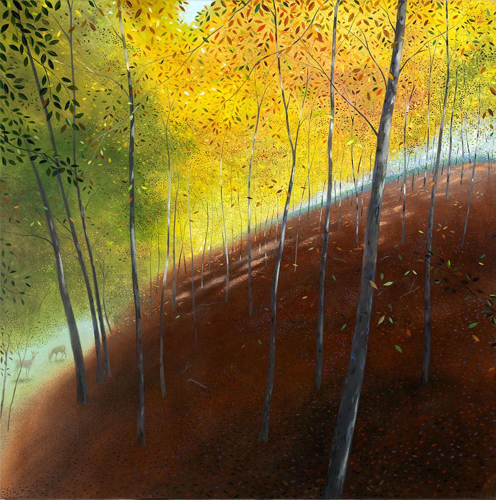 Autumn Light – Melbury Wood