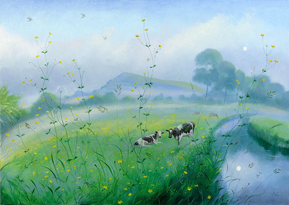 Misty May Morning