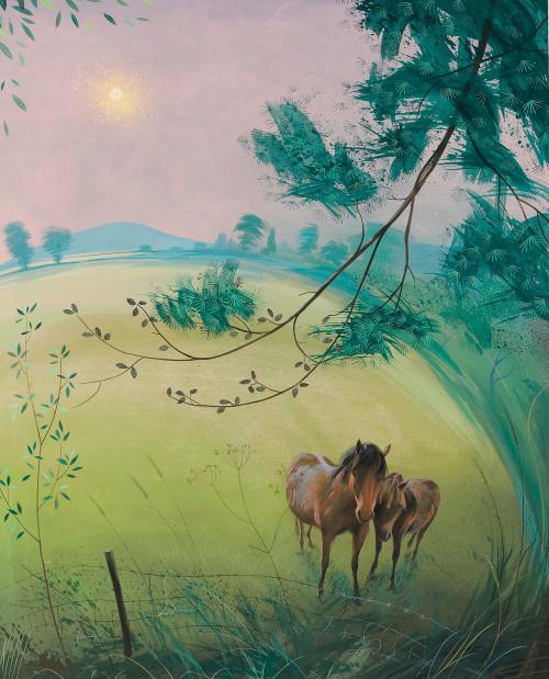 Wicklow Ponies