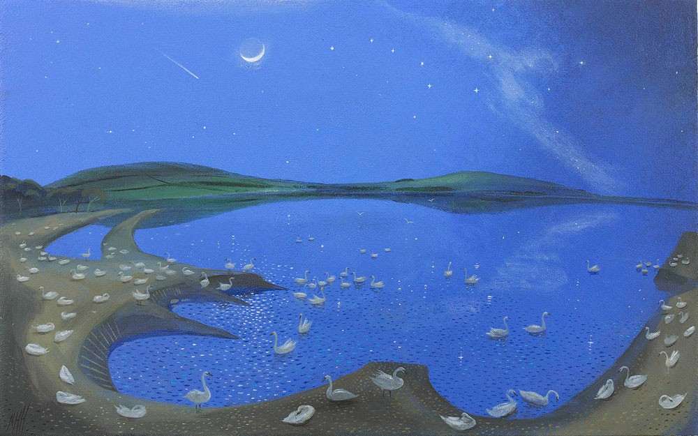 Swans at Night – Abbotsbury